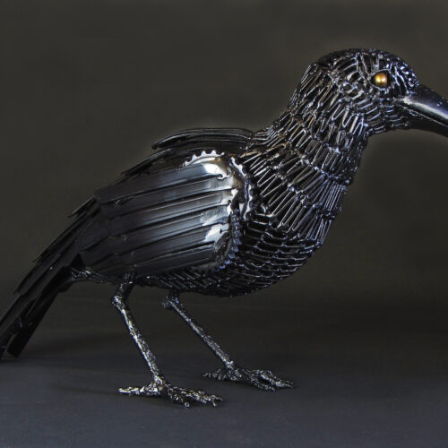 """Edgar the Raven"""